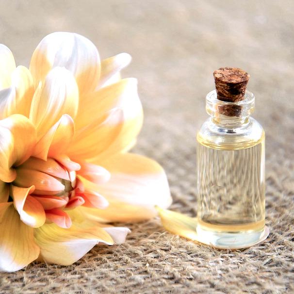Yves Rocher - skvost rostlinné kosmetiky
